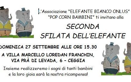 Cattura_seconda_sfilata2015